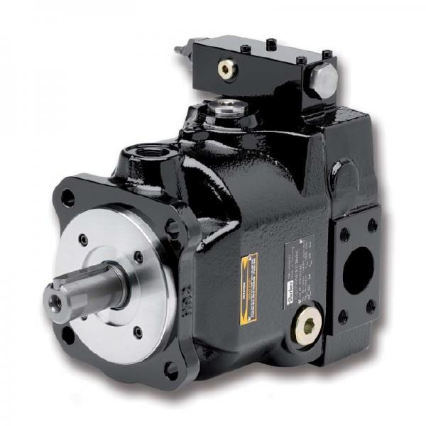 PAKER PAV10 Piston Pump #1 image