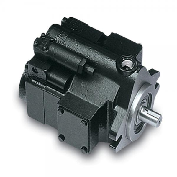 PAKER PAV10 Piston Pump #2 image